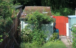 Read more about the article How I Removed Asbestos Cement Sheet Garage Roof As A DIY Project